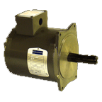 Door Motor – 65 oz. AC Motor 220v – 3.2 amps